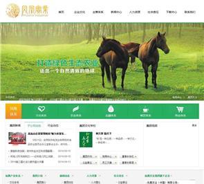河南凤凰实业集团网站设计案例_文化餐饮农林网站制作