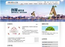 沿海国际控股有限公司网站设计案例
