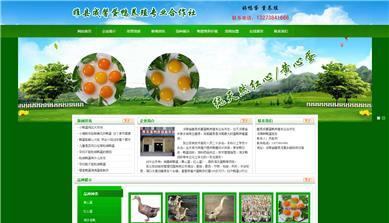 河南省睢县成馨蛋鸭养殖专业合作社网站制作