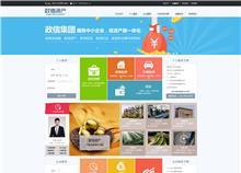 河南政信资产管理有限公司网站建设上线