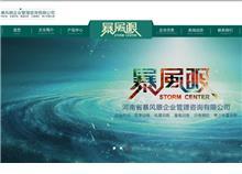 河南省暴风眼企业管理咨询有限公司网站效果图