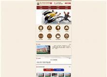 嵩山少林寺文武学院手机网站设计