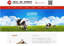 郑州网站建设案例_中盐本谷