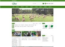 畜牧网站行业站网站开发项目