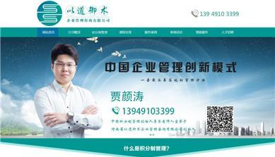 以道御术积分制企业管理网站建设