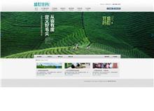 信阳盛世佳茗茶业有限公司网站建设